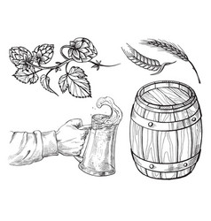 hand holding with beer mug barrel hops ears vector image