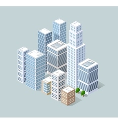 Isometric 3D city vector