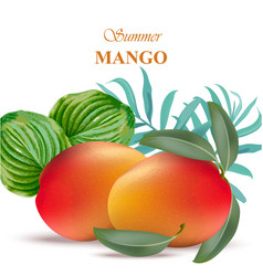 Mango fruit with green leaves vector