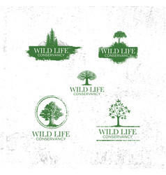 adventure emblems with different travel design vector image