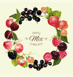 Berry mix composition vector image