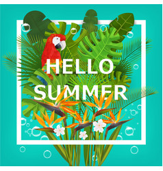 Hello summer background with tropical plants vector image