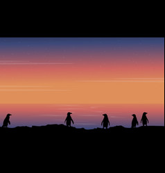 Silhouette of penguin beauty landscape vector