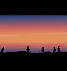 silhouette of penguin beauty landscape vector image