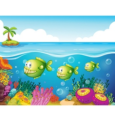 Three green piranhas under the sea vector