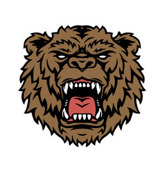 wild angry bear head concept vector image