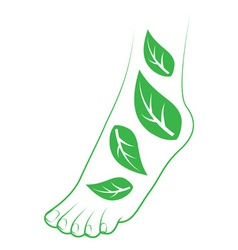 Human foot with leafs vector image