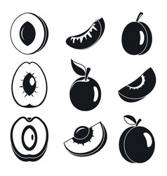 apricot fruit icons set simple style vector image