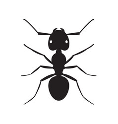 Black ant insect silhouette vector