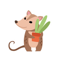 Cute opossum holding flower pot with houseplant vector