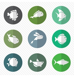 Group of fish in the circle vector