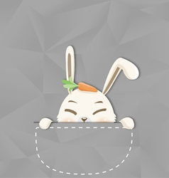 Hide rabbit vector image