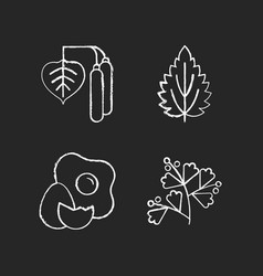 Intolerance for allergen chalk white icons set vector