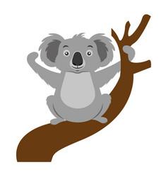 Koala animal on branch vector