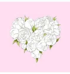 White peonies heart vector