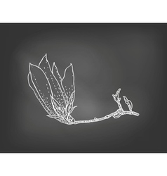 Card with magnolia flower on chalkboard vector image