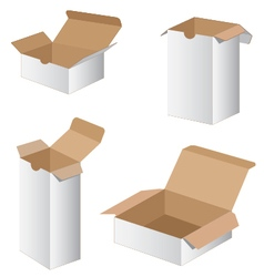 Collection Box Packaging Design Collection box vector image