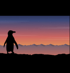 background penguin silhouette beauty landscape vector image