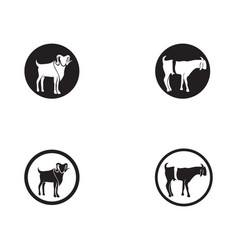 goat black animals logo and symbols template vector image