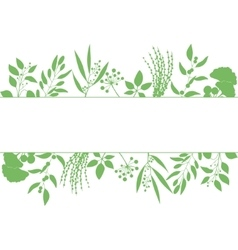 Green rectangle frame with collection of plants vector