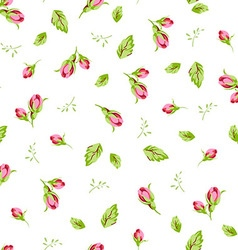 Pattern with small buds roses vector