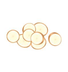 Raw cassava fresh isolated on white background vector