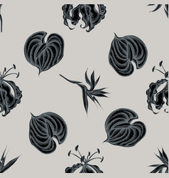seamless pattern with hand drawn stylized gloriosa vector image