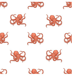seamless pattern with octopus on white background vector image