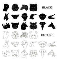 Wild animal black icons in set collection for vector
