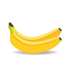 banana isolated on white banana background vector image