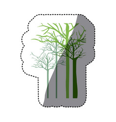 green trees without leaves icon vector image