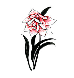 Hand drawn painting with colorful flower on white vector