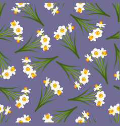 White daffodil - narcissus seamless on purple vector