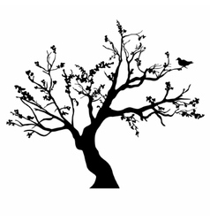 Tree black silhouette isolated on white background vector image