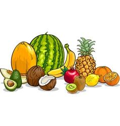 tropical fruits cartoon vector image vector image