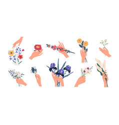 collection hands holding bouquets or bunches of vector image