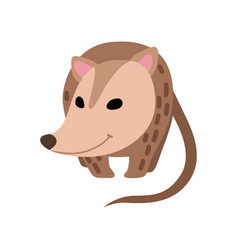 Cute opossum adorable wild animal front view vector
