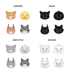 different species of animals cat muzzle ducks vector image