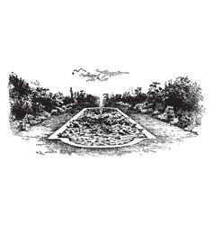 lawn pond of aquatics ornamental vintage vector image