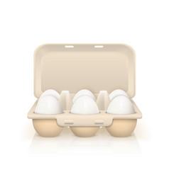 Eggs in box vector