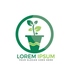 flower pot and plant logo vector image