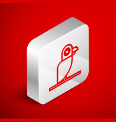 Isometric line pirate parrot icon isolated on red vector