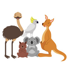 Kangaroo koala wombat cockatoo and emu vector