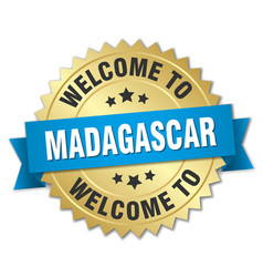 Madagascar 3d gold badge with blue ribbon vector