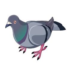 Pigeon isometric icon vector image