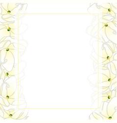 Arabian jasmine banner card border vector