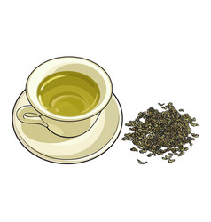 China porcelain cup and pile of dry green tea vector