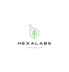hexagon leaf nature lab hexalabs logo icon vector image