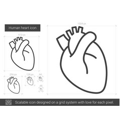Human heart line icon vector