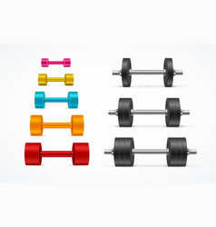 Realistic detailed 3d different color gym vector
